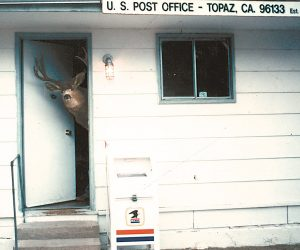 Topaz Post Office permanently vacated after emergency suspension